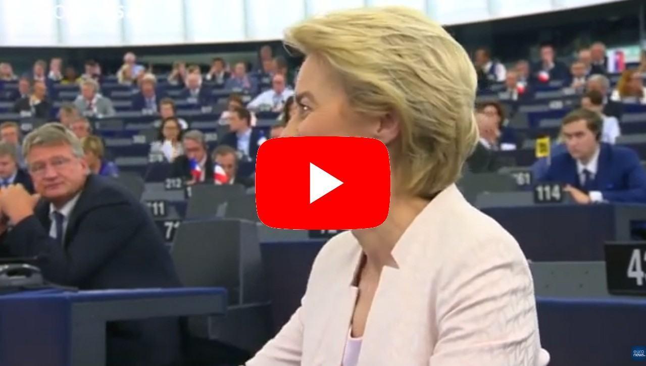 """I liberali a von der Leyen: """"Non dia il parlamento per scontato"""""""