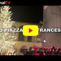 Ecco l'albero di Natale acceso in piazza san Francesco ad Assisi