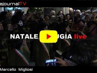 Natale a Perugia, acceso l'albero, gli igloo, inaugurati i mercatini in centro