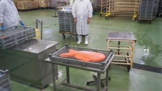 広島カープお祝い鯛の取材を受けました