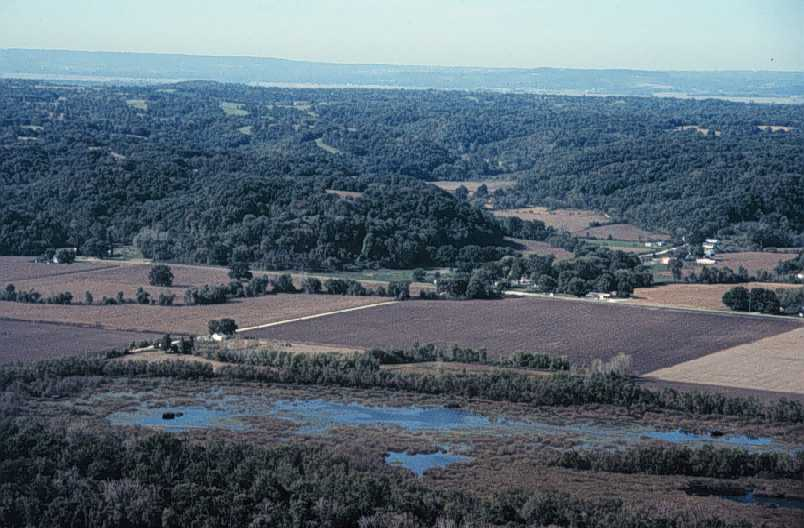 USGS photo of land near Jerseyville, Illinois, near the Illinois River. Hills are unplowed now (they may have been farmed in the past), and waterways have banks of brush and trees for some distance, partly to control erosion. Notice wild tree and shrub growth between some fields.