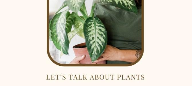 LET US TALK ABOUT PLANTS