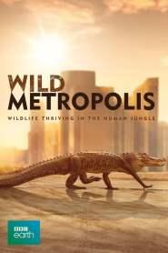 Wild Metropolis