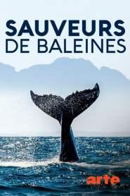 Inselhelden: Die Wal-Retter von Campobello Island