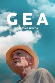 Gea – The last cow