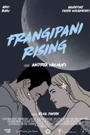 Frangipani Rising