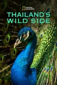 Thailand's Wild Side