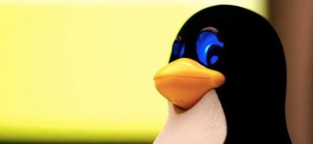 Linux Shell e Kernel