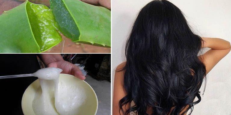 Hidronutrição capilar: fortalece raiz do cabelo, dá brilho e acelera crescimento