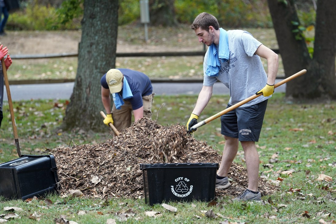 UMW students volunteered their time during Into the Streets, working for Tree Fredericksburg, Downtown Greens, the Thurman Brisben Homeless Shelter and other organizations. Photo by Suzanne Carr Rossi.