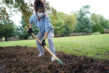 UMW student Yamila Merida spreads mulch for Tree Fredericksburg. Photo by Suzanne Carr Rossi.