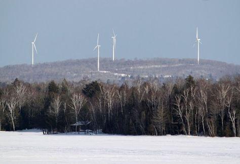 Ein realistischer Albtraum: Hier streng geschützte Nationalparks, dort intensiv genutzte Forste durchsetzt mit Windrädern