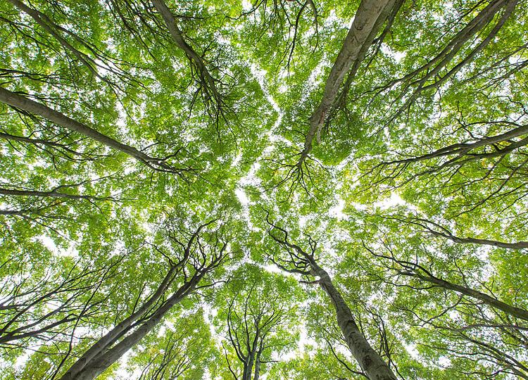 UmweltbildungNRW  Aktuelles
