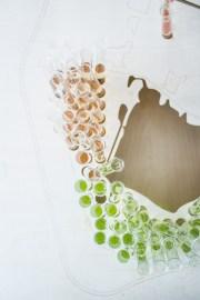 Bloesembar by Maidie van den Bosch | un-fold-ed.com