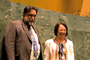 The UN Declaration on the Rights of Indigenous Peoples was adopted by the GA in 2007