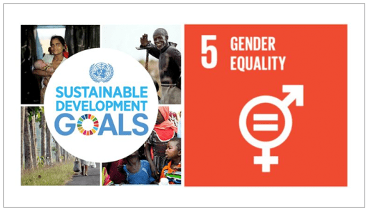 Gender equality and women's empowerment – United Nations Sustainable  Development