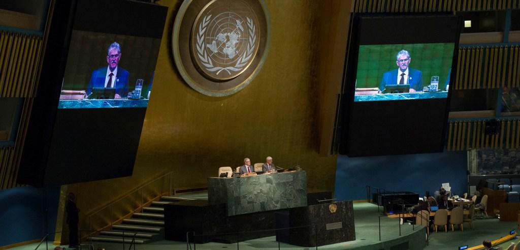 113ª sesión plenaria del Septuagésimo período de sesiones de la Asamblea General. La cuestión de la representación equitativa en el Consejo de Seguridad y del aumento del número de sus miembros y otros asuntos relativos al Consejo de Seguridad [tema 121]