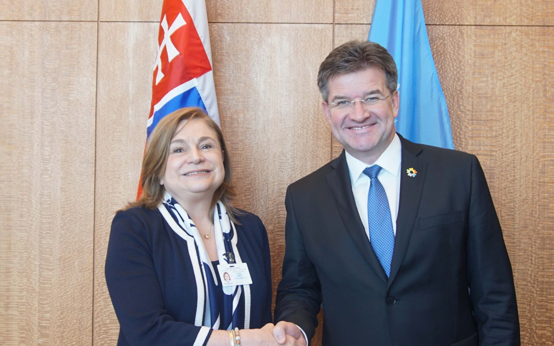 Meeting with Minister for Public Service of Mexico