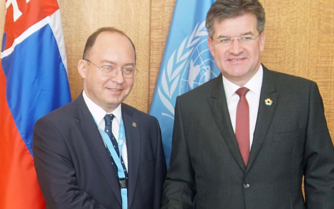 Meeting with Foreign Policy Adviser to the President of Romania