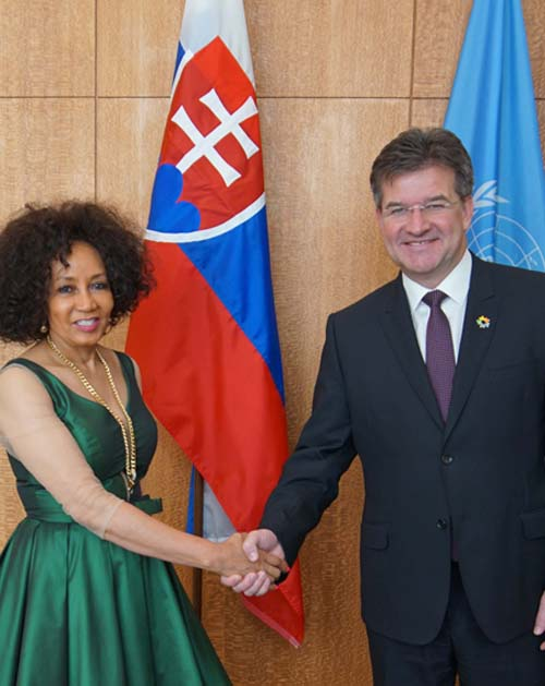 Meeting with H.E Ms. Lindiwe Nonceba Sisulu, Minister for International Relations and Cooperation of the Republic of South Africa