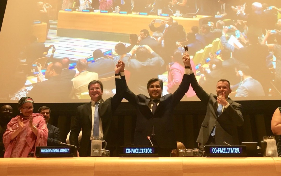 Final Intergovernmental Negotiations on the Global Compact for Safe, Orderly and Regular Migration