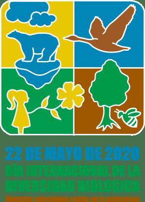Logo for the theme 2020