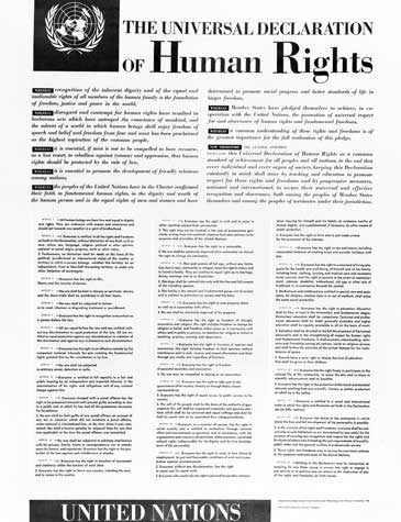 Universal Declaration Of Human Rights الأمم المتحدة