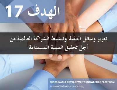 الهدف 17 - تعزيز وسائل التنفيذ وتنشيط الشراكة العالمية من أجل التنمية المستدامة  الشؤون المالية