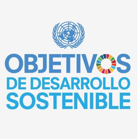 Logo de los Objetivos y metas de desarrollo sostenible