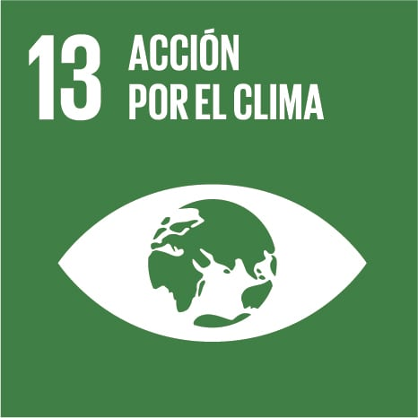 Objetivo 13 - ACCIÓN POR EL CLIMA