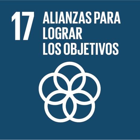 Objetivo 17 - ALIANZAS PARA LOGRAR LOS OBJETIVOS