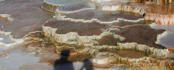 Parque Nacinal de Yellowstone, Wyoming, Estados Unidos. Foto: ONU/EFP