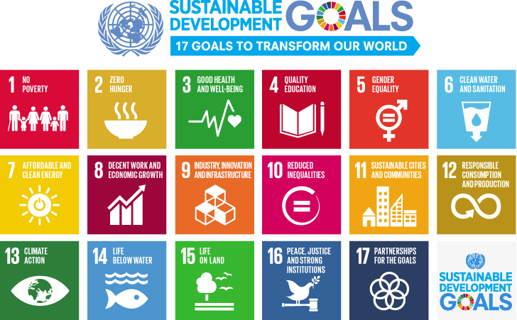 Sustainable Development Goals Launch In 2016