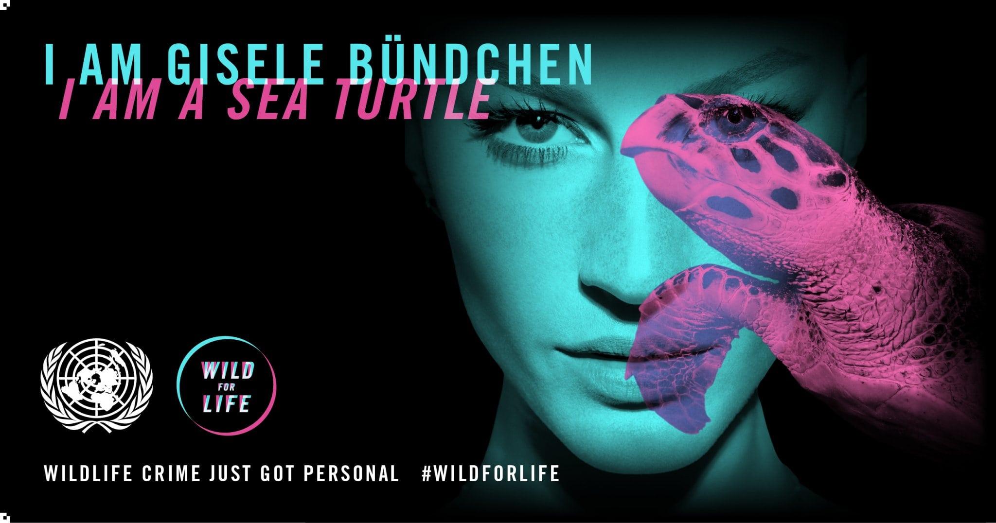 Image: Gisele Bundchen and a sea turtle.