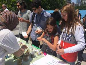 Photo: Fairgoers choose their own sustainable tea flavours.