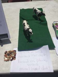 Photo: A vegetarian diet needs less land than an animal-based one, says one vendor.