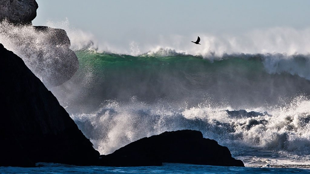 Pounding early winter surf from massive 15 foot ocean swells. Photo: Irin News/ Mike Baird/Flickr