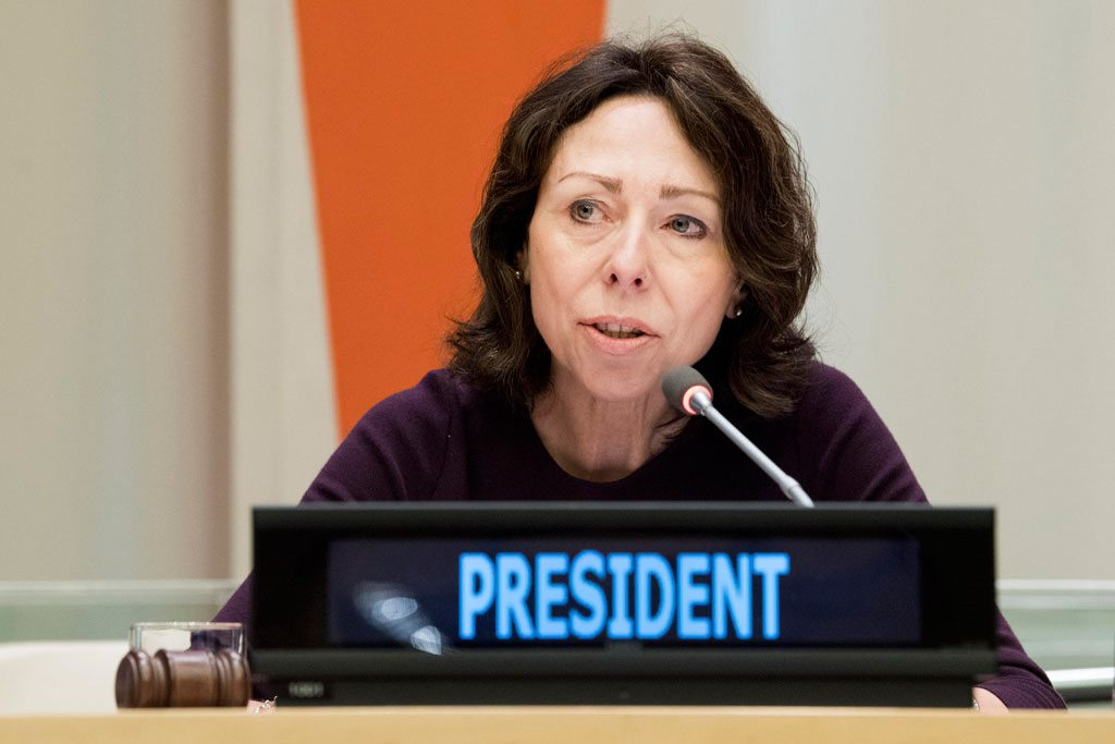 Ambassador Marie Chatardová, newly-elected President of the Economic and Social Council, addresses the Council. UN Photo/Kim Haughton