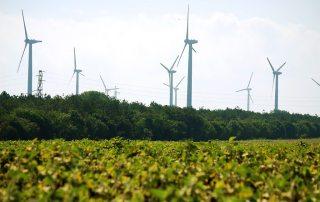 Photo: A wind farm near Kavarna, Bulgaria.