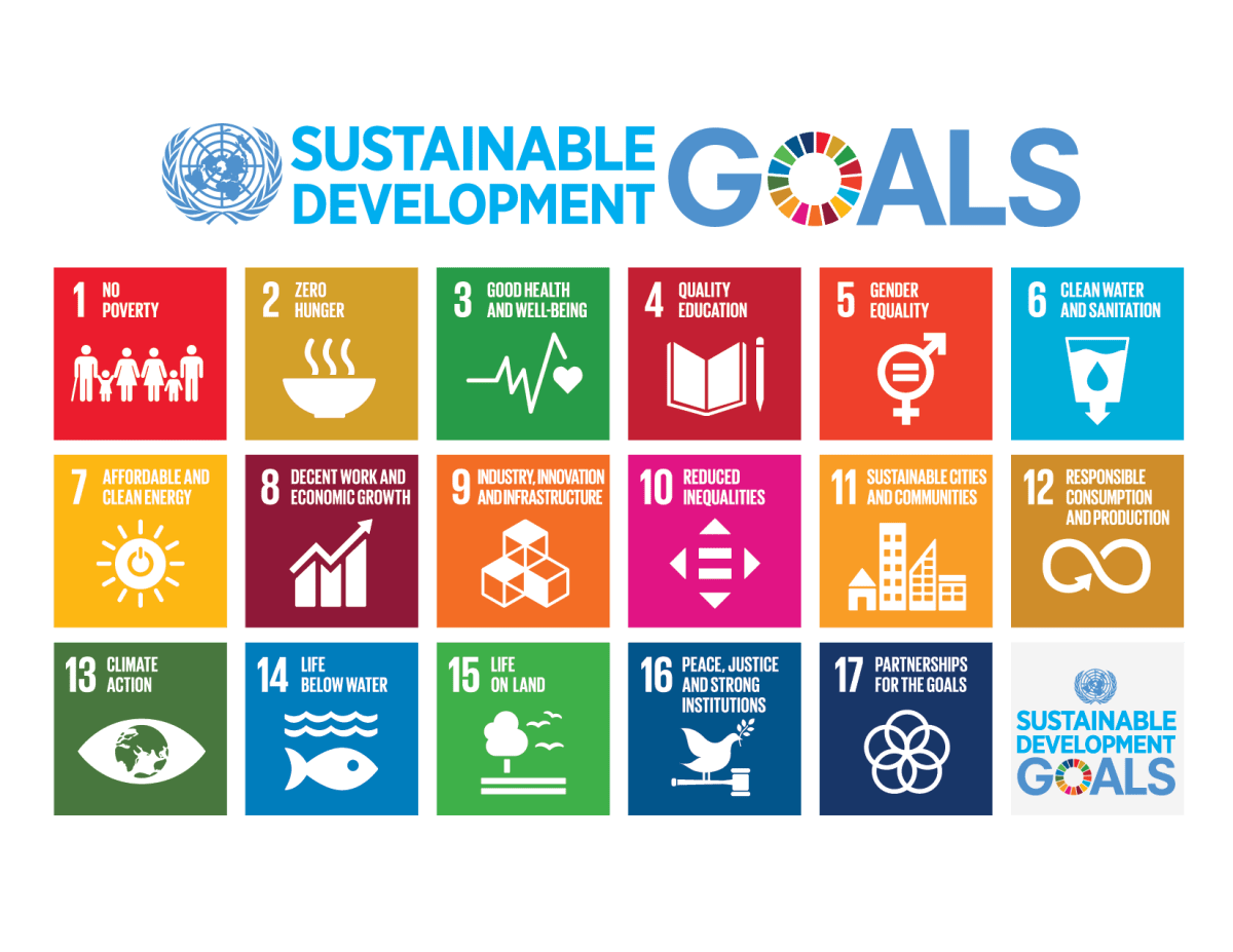 Image result for global goals icons