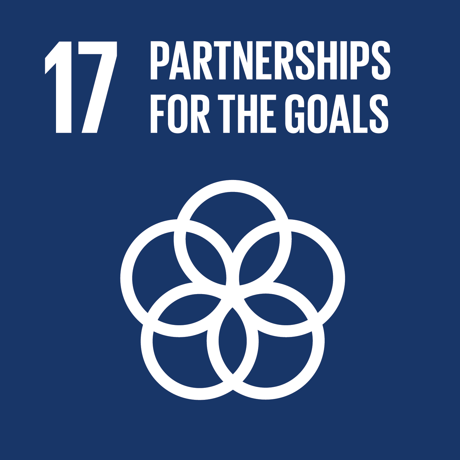 Goal 10: partnerships