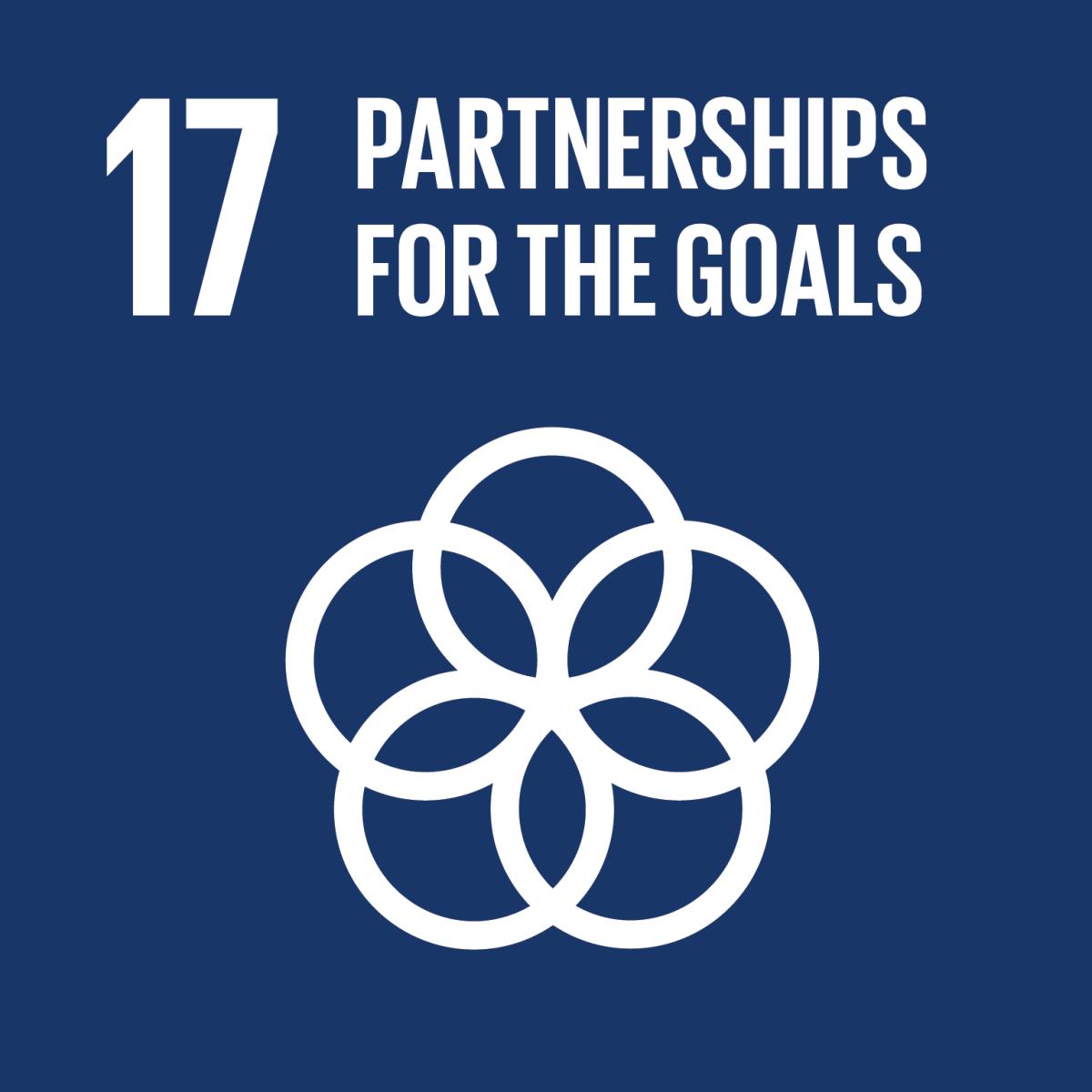 Goal 10: partnerships