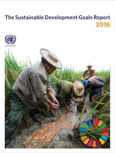 SDG Report 2018 Cover
