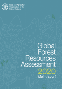 Forest Assessment Report cover