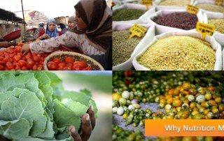 A photo collage which advertises the FAO photo contest