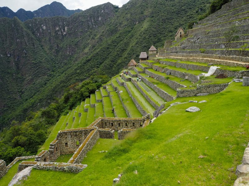 terrazze Machu Picchu