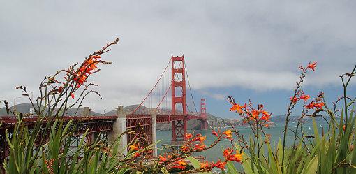 San Francisco di Daniela Sola