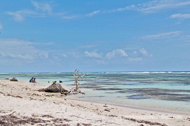 grande-terre-guadalupa-spiagge-bianche-boisjolan2