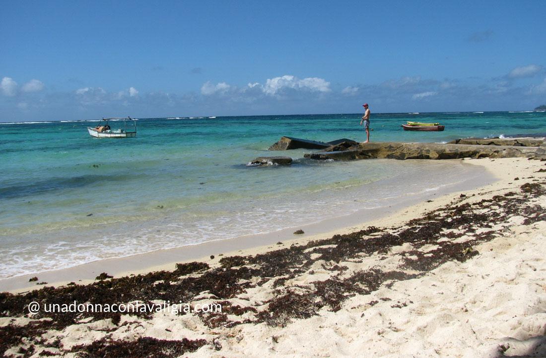 """Spiagge """"caraibiche"""", libere, naturali e con le alghe. Se non vi sta bene, ci sono i resort."""