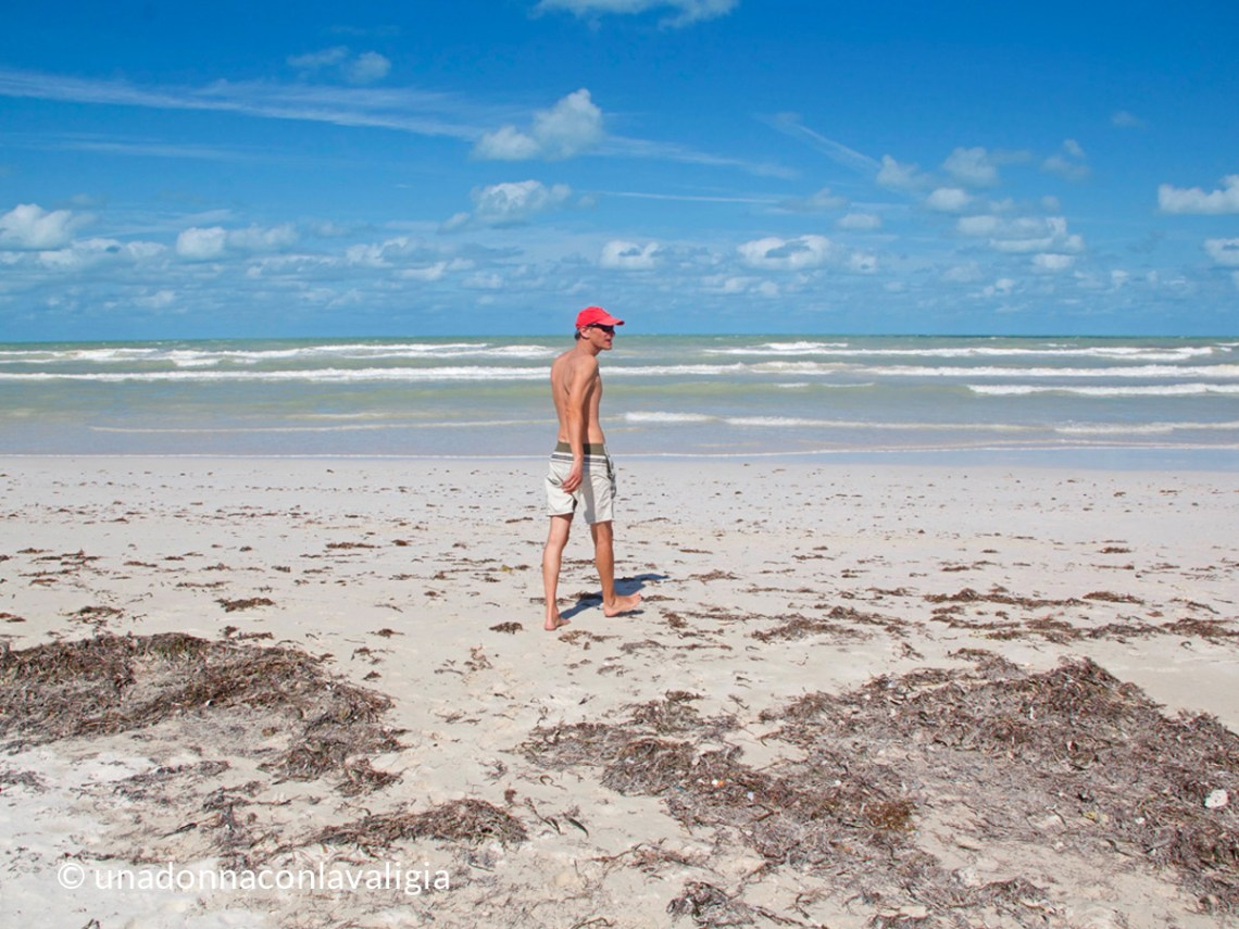 Mexico, Riviera Maya beaches: seaweed and sargassum situation Dec